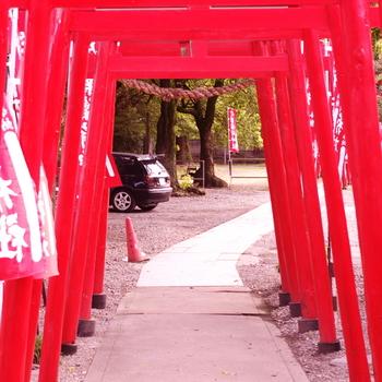 driveOkikuInari_00.jpg